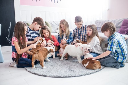 A group of children playing with puppies bulldog in the nursery