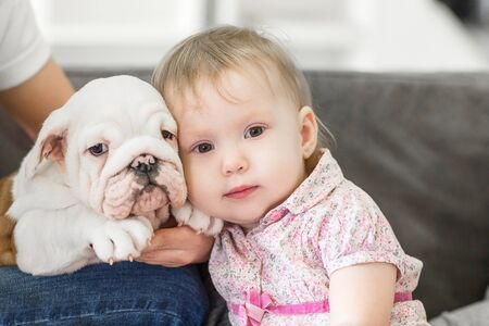 Portrait of a cute girl and little bulldog puppies