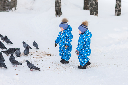 Twin boys walking in the Park in the winter and feed the pigeons bread crumbs