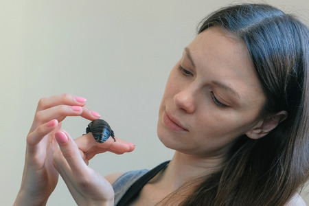 Young woman holding a male of Gromphadorhina portentosa the hissing cockroach, one of the largest species of Madagascar cockroach.