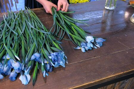 Creating professional bunch. Florist woman makes bouquet from blue iris flowers on table for sale in shop, hands closeup. Working in floristic studio store. Floral business concept.
