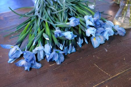 Floral business concept. Blue lovely iris flowers with long stems on dark wooden table in flower shop. Creates professional bunch in floristic studio store.