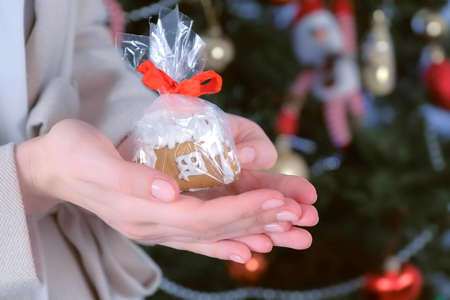 Gingerbread house in package as presents for Christmas on womans hands on tree background. New Year atmosphere at home. Preparing gifts for holiday. Sweet homemade bakery. Stok Fotoğraf