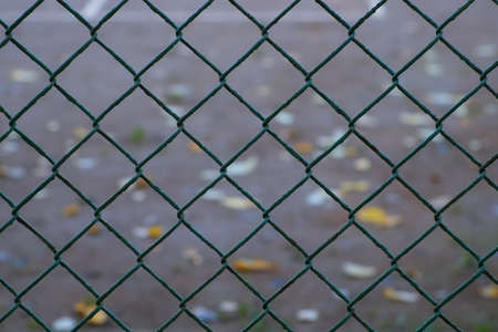 Green metal wire fence with rhombuses in park, view on asphalt through it. Fencing of the sports ground in the autumn Park with yellow leaves.