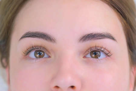 Womans lashes after beauty procedure of eyelash lifting and laminating in beauty clinic, eyes closeup. Young woman in cosmetology clinic with open eyes. Lift of lash and eyelash.