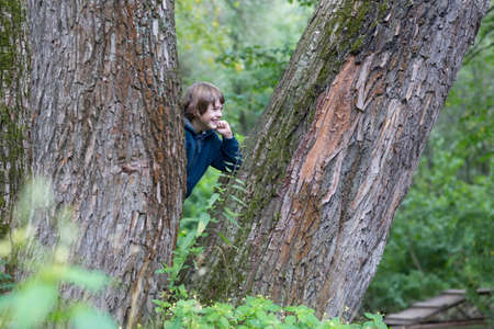 hide and seek: Boy in the trees Stock Photo