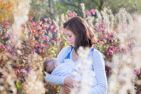 babies playing outside: Young beautiful mother breastfeeding her baby in a meadow on a sunny day