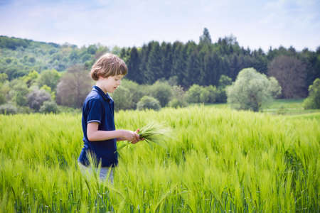 Little boy playing in a scenic field  photo