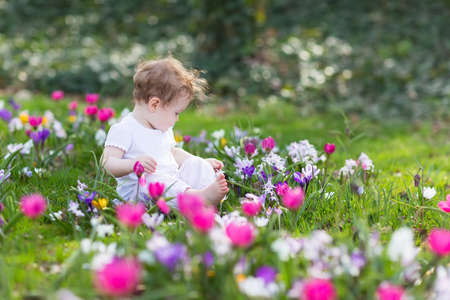 Sweet baby girl playing in a field of flowers  photo