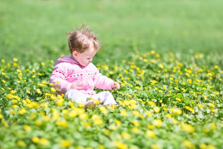 first day: Adorable baby girl playing with yellow flowers in a park