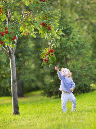 under tree: Cute funny baby girl running under a red berry tree in a sunny autumn park