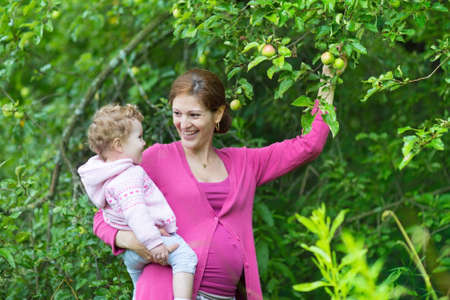 Pregnant young mother and her beautiful baby daughter picking apples in a fruit garden on a rainy autumn day  photo