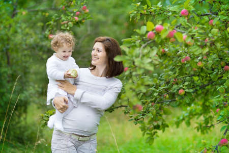 Young beautiful pregnant mother and her one year old baby daughter picking apples in a fruit garden dressed in white  photo