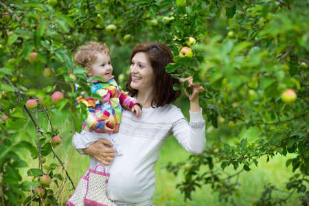 Attractive young pregnant woman holding her baby daughter under an apple tree in a fruit garden in autumn  photo