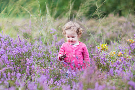 Cute little baby girl playing with purple heather flowers on a nice warm sunny autumn day in Holland