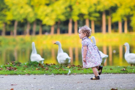 Little happy baby girl running at a river shore chasing wild geese in an autumn park  photo