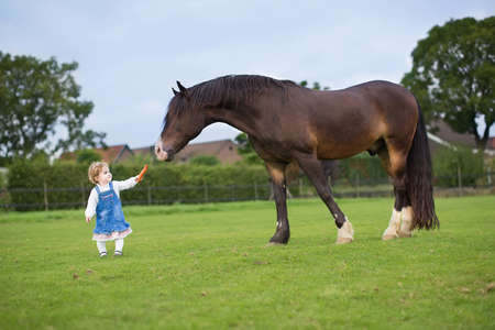 Cute little baby girl feeding a big horse on a ranch in autumn Imagens - 29702194