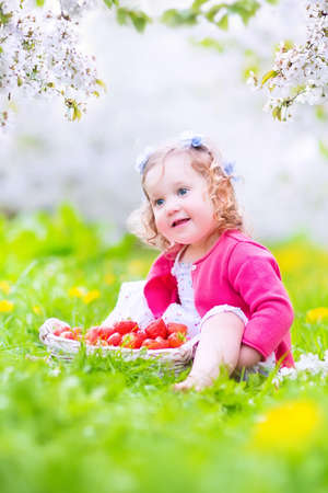 Cute happy toddler girl with curly hair and flower crown wearing a red dress enjoying picnic in a beautiful blooming fruit garden with white blossoms on apple trees eating strawberry for healthy snack  photo