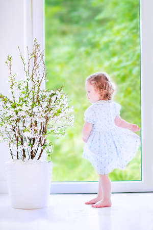 Cute little girl, funny toddler with curly hair wearing a blue festive dress, dancing and playing at a cherry blossom tree at home in a white sunny living room with a big garden view window photo