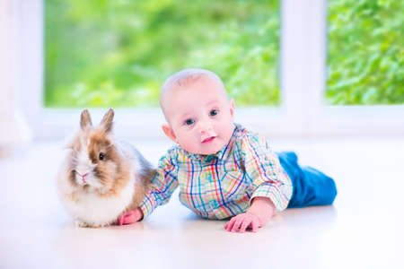 Adorable little baby playing with a funny real bunny on the floor in a white sunny room with a big garden view window