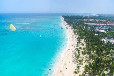 caribbean island: View from above of a beautiful tropical beach with palms
