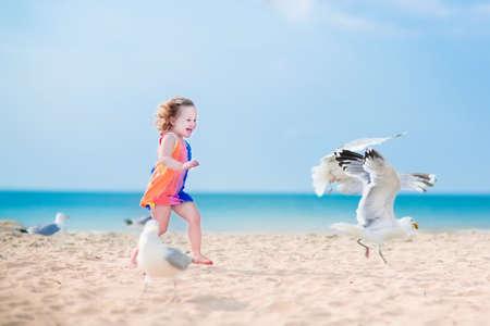 gaviota: Niño lauging divertido, niña adorable con el pelo rizado en un vestido de colores jugando con aves gaviota, corriendo y saltando en una hermosa playa en un día caluroso de verano soleado