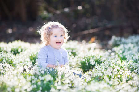first day: Beautiful curly toddler girl playing with first spring flowers in a beautiful spring sunny park   Stock Photo