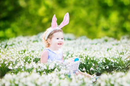 egg hunt: Adorable toddler girl wearing bunny ears playing with Easter eggs in a white basket sitting in a sunny garden with first white spring flowers   Stock Photo