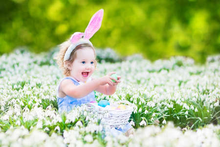 Adorable toddler girl wearing bunny ears playing with Easter eggs in a white basket sitting in a sunny garden with first white spring flowers   Stock Photo