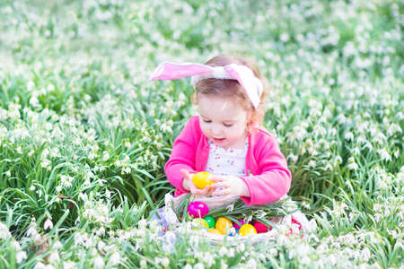Adorable toddler girl wearing bunny ears playing with Easter eggs in a white basket sitting in a sunny garden with first white spring flowers   photo