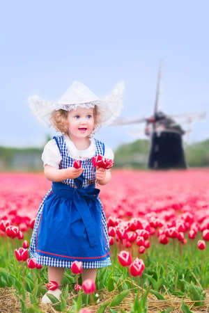 dutch girl: Beautiful curly toddler girl wearing Dutch traditional national costume dress and hat playing in a field of blooming tulips next to a windmill in Amsterdam region, Holland, Netherlands