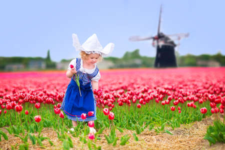 Adorable curly toddler girl wearing Dutch traditional national costume dress and hat playing in a field of blooming tulips next to a windmill in Amsterdam region, Holland, Netherlands Standard-Bild