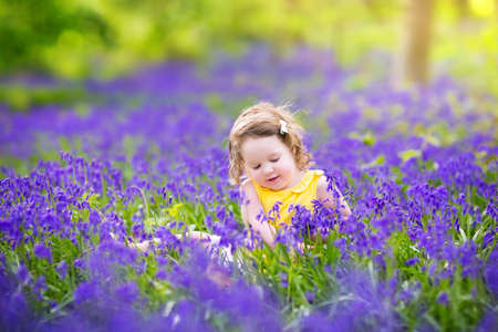 Adorable toddler girl with curly hair wearing a yellow dress playing with purple bluebell flowers in a sunny spring forest on a warm evening with beautiful sunset  photo