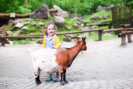 Schattige kleine peuter meisje met krullend hoort het dragen van een kleurrijke kleding voeden van een geit spelen en plezier kijken naar dieren op een dagtocht naar een moderne stad dierentuin op een hete zomerdag