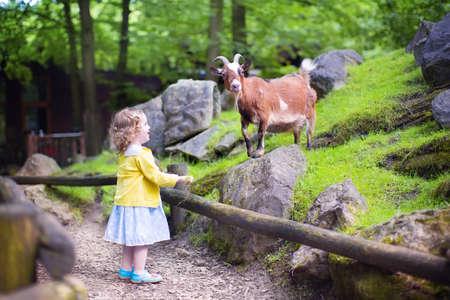 cabra: Niña linda niño con escuchar rizado con un colorido vestido amamantar al juego de cabra y que se divierte viendo los animales de una excursión de un día a un zoológico de la ciudad moderna en un día caluroso de verano
