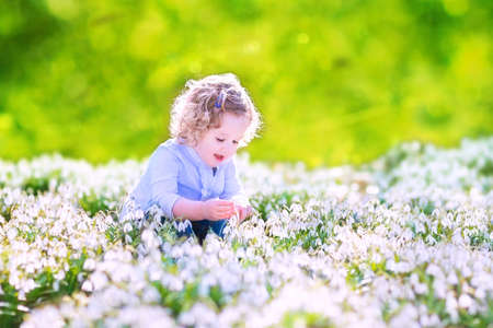 early spring snow: Happy laughing toddler girl with curly hair in a blue dress playing with first spring snowdrops flowers in a beautiful sunny park Stock Photo