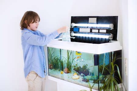 school of fish: Little happy boy holding a plastic bag with new fishes he bought at the zoo store for his home room aquarium feeding and taking care of pets Stock Photo