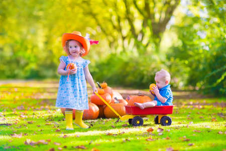 Two happy children at pumpkin patch during Halloween, cute curly little girl in a cowboy hat pushing a wheel barrow with a funny baby boy on a sunny autumn day on a farm photo