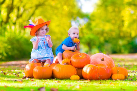 cowgirl boots: Happy children at pumpking patch during Halloween, little girl in a blue dress, boots and cowboy hat and baby boy having fun together trick or treating on a sunny autumn day