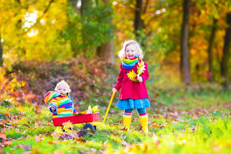 sister: Cute little children, adorable toddler girl and a funny baby boy, brother and sister, playing in a sunny autumn park with a wheel barrow and colorful leaves