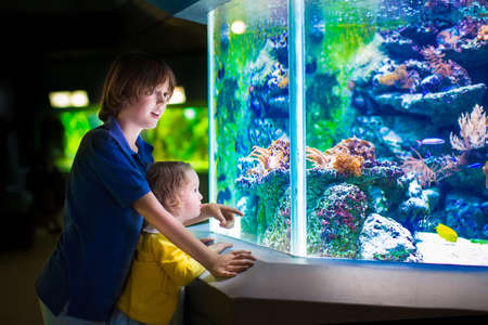 zoo youth: Happy laughing boy and his adorable toddler sister, cute little curly girl watching fishes in a tropical aquarium with coral reef wild life having fun together on a day trip to a modern city zoo Stock Photo