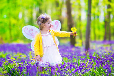 Adorable toddler girl with curly hair wearing a fairy costume with purple wings and yellow dress is playing in a beautiful spring forest with fresh blooming bluebell flowers on a sunny day in Germany