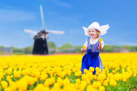 holland landscape: Adorable curly toddler girl wearing Dutch traditional national costume dress and hat playing in a field of blooming tulips next to a windmill in Amsterdam region, Holland, Netherlands Stock Photo