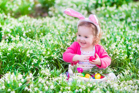 egg hunt: Adorable curly toddler girl wearing bunny ears playing with Easter eggs in a white basket sitting in a sunny garden with first white spring flowers
