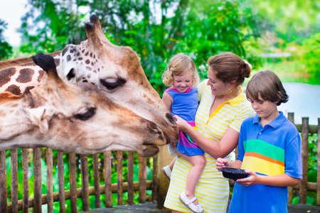 행복한 가족, 두 아이들과 젊은 어머니, 귀여운 웃음 유아 소녀와 뜨거운 여름 날에 도시의 동물원에 여행하는 동안 기린에게 먹이를 사춘기 나이 소년