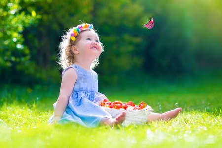 Cute little toddler girl with curly hair wearing a blue summer dress having fun in the garden eating healthy fresh strawberry for healthy fruit snack watching a colorful butterfly relaxing in the garden on a sunny spring day photo
