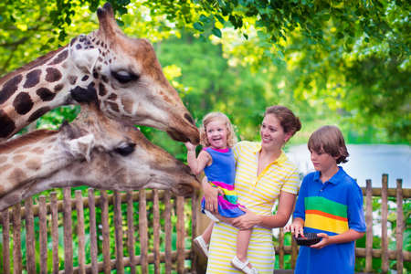 Happy family, young mother with two children, cute laughing toddler girl and a teen age boy feeding giraffe during a trip to a city zoo on a hot summer day Standard-Bild