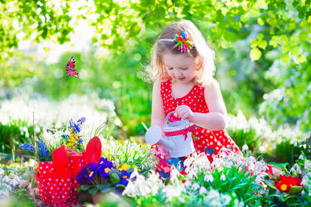 seed bed: Cute curly little girl in a red summer dress working in the garden watering first spring flowers on a sunny warm day Stock Photo