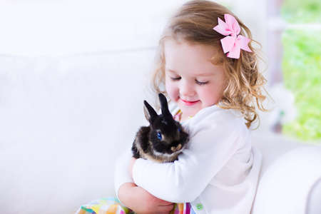 black and white farm: Happy laughing little girl playing with a baby rabbit, hugging her real bunny pet and learning to take care of an animal. Child on a white couch at home or kindergarten.