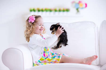 white rabbit: Happy laughing little girl playing with a baby rabbit, hugging her real bunny pet and learning to take care of an animal. Child on a white couch at home or kindergarten.